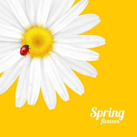 Bright spring background design. resizable illustration.
