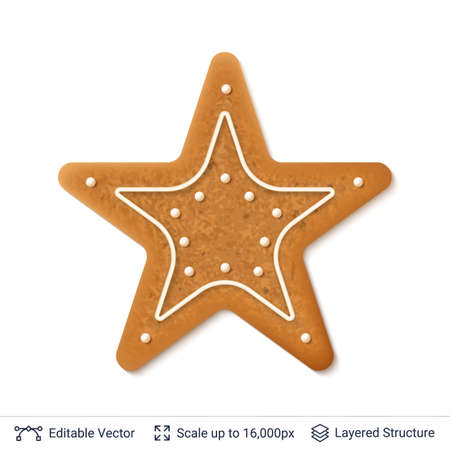 Gingerbread cookie in star form, isolated on white. Illustration