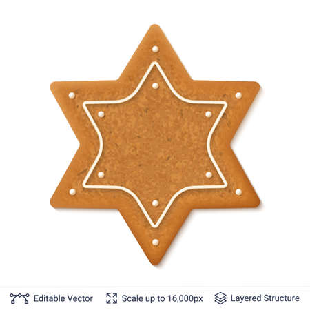Gingerbread cookie in star biscuit design isolated on white. Illustration