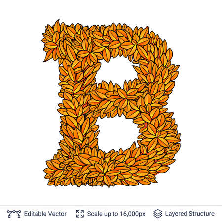 Letter B sign of autumn leaves.