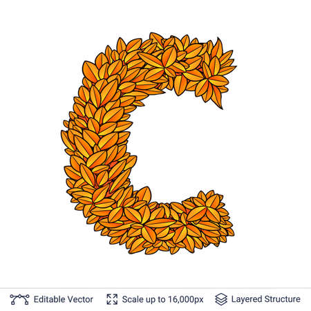 Letter C sign of autumn leaves.