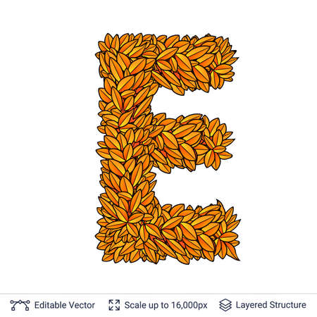 Letter E sign of autumn leaves.