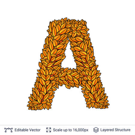 Letter A sign of autumn leaves. Stock Photo