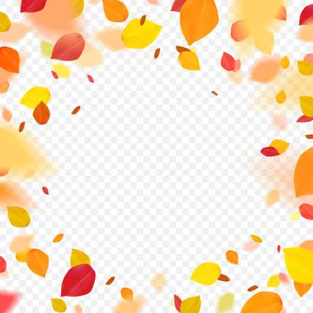Orange colorful leaves flying falling effect.