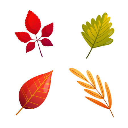 Set of bright colorful autumn fall leaves.