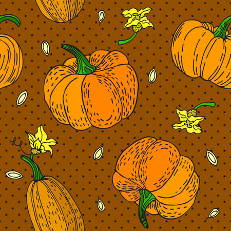 Seamless pattern with an ornament from naturally drawn pumpkin. Can be used in design on textiles, wrapping paper.
