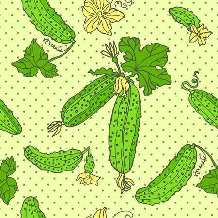 Seamless pattern with an ornament from naturally drawn cucumber. Can be used in design on textiles, wrapping paper.