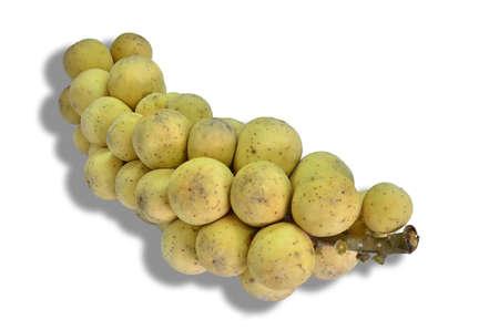 rosids: Lansium parasiticum