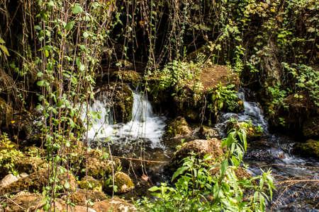 banias: Banias park and waterfall