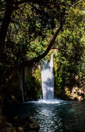 Banias Waterfall photo
