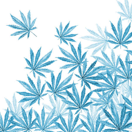 sativa: Crowd of Cannabis leaves on white background. Hand drawn watercolor illustration of the plant Cannabis Sativa or Marijuana. Pattern with marijuana leaf for label, poster, web. Stock Photo