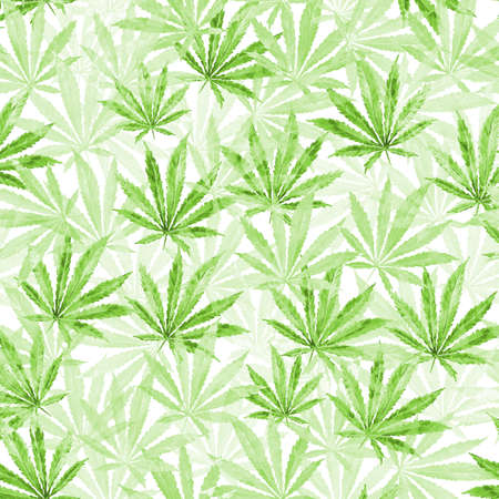 Green Cannabis leaves on white background. Hand drawn watercolor illustration of the plant Cannabis Sativa or Marijuana. Pattern with marijuana leaf for label, poster, web. Stock Photo