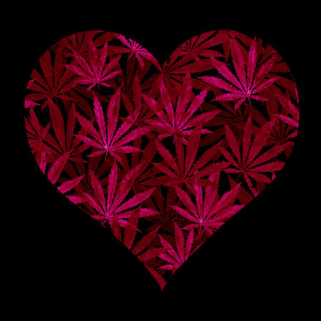 Heart of Bright blue cannabis sativa leaves painted in watercolor. Realistic scientific illustration of plant. Hand drawn marijuana illustration isolated on white background. Design element