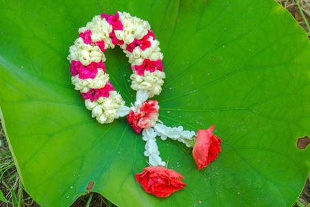 spuria: ghirlanda di fiori Archivio Fotografico