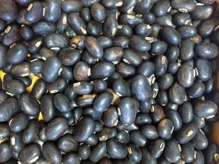 Мукуна жгучая из семян рецепт