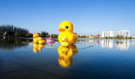 thani: Rubber duck