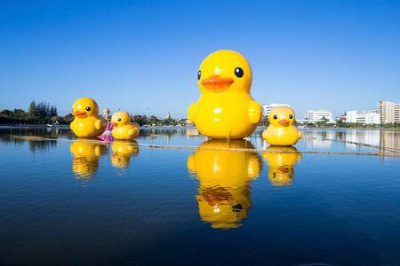 rubber duck: Rubber duck