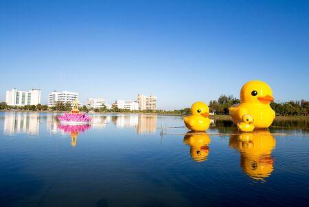 pato de hule: Rubber duck