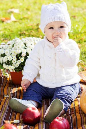 Baby boy with pumpkins in autumn park photo