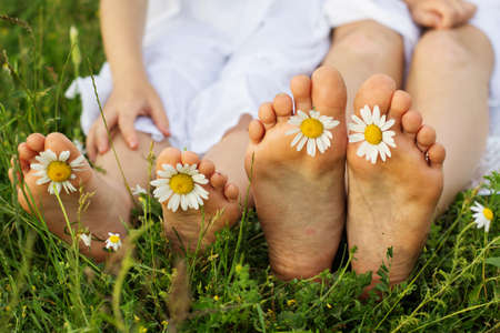 Childs feets with daisy flower on green grass in a green field, outdoors