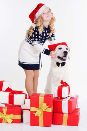 labrador christmas: Girl with labrador dog are wearing christmas hats. Happy child. Studio shot