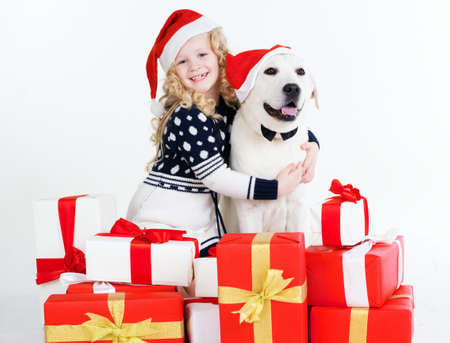 labrador christmas: Child blonde girl with white labrador dog are wearing christmas hats. Happy child. Studio shot Stock Photo