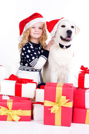 labrador christmas: Pretty blonde girl with her friend white labrador dog are wearing christmas hats isolates on white in studio
