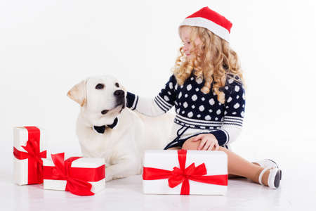 labrador christmas: Pretty blonde girl with her friend white labrador dog are wearing christmas hats and sitting with gifts isolates on white in studio