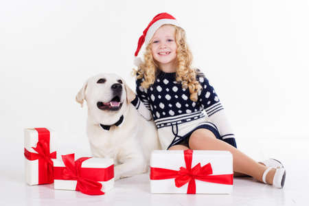labrador christmas: Pretty blonde girl with her friend white labrador retriever are wearing christmas hats and sitting with gifts isolates on white in studio