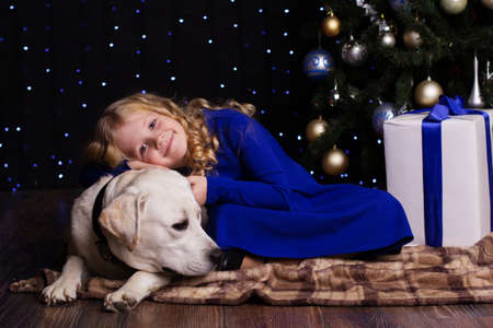 labrador christmas: Pretty blonde child girl with her friend white labrador retriever are lying near christmas tree at home