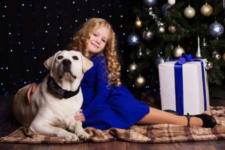 labrador christmas: Pretty blonde child girl with her friend white labrador dog are sitting near christmas tree at home
