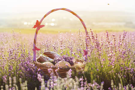 sweetstuff: Beautiful basket with purple ribbon and butterfly and sweet-stuff in meadow of lavender flowers