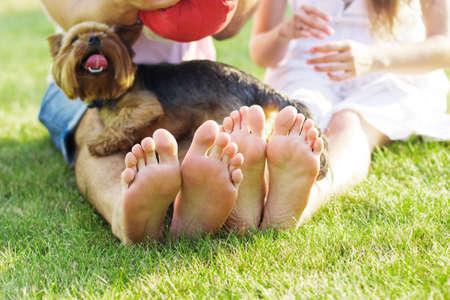 piedi nudi di bambine: Closeup foto di coppia piedini che giace in fila al verde erba