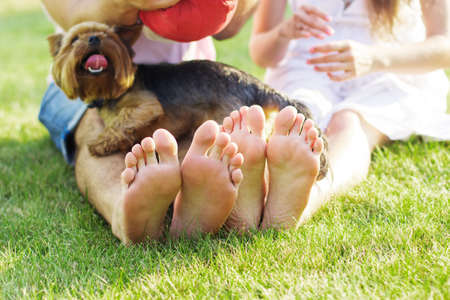 Closeup picture of couple feets lying in line at green grass