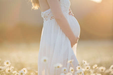 Portrait of pretty pregnant girl is wearing white fashion dress on the camomile field