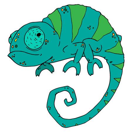Chameleon icon. Vector illustration of cartoon chameleon. Hand drawn funny chameleon.