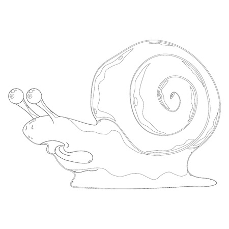 Icon of the snail. Silhouette of a snail with a tongue out for coloring. Vector illustration. Illustration