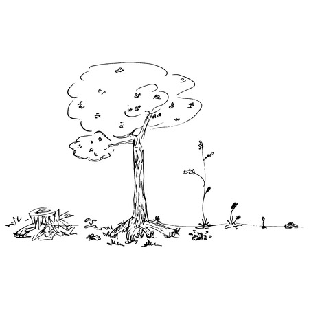 Concept of the development of trees from the bush to the tree and stump. Vector illustration of tree and stump.Hand drawn doodle young bush, a tree, a stump.
