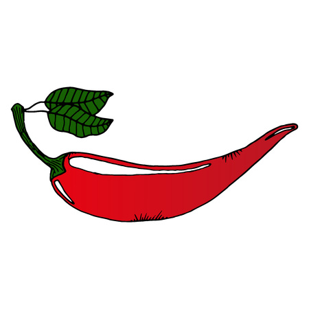 vector hot pepperpainted chilipepper pattern
