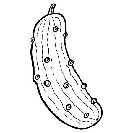 Handgezeichnete Gurke. Vektorillustration einer Gurke. Doodle schwarz-weiße Gurke. Vektorgrafik