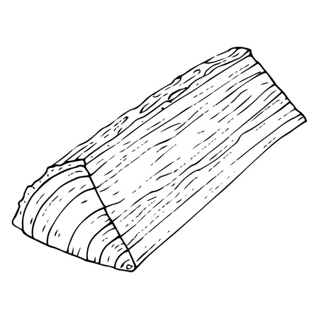 Log icon. Vector illustration of a log texture. Hand drawn log.