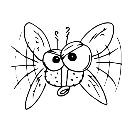 Fly hand drawn. Vector illustration of cartoon fly. Icon fly.