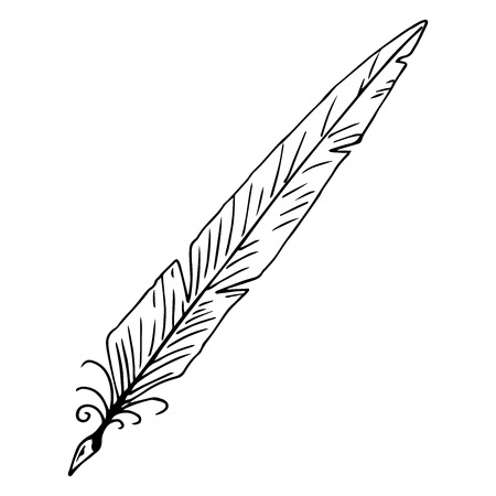 Feather pen hand drawn. Vector illustration ink pen. Feather pen icon. 일러스트