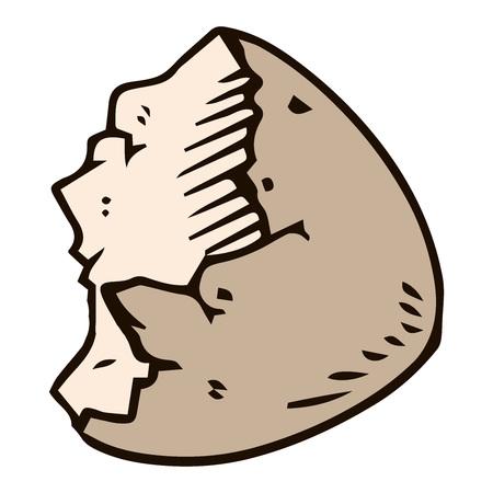 Shell of the eggs hand drawn. Vector illustration of egg shell. Broken egg icon.