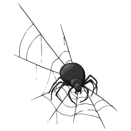 Spider on web icon. Vector illustration spider web with a spider. Hand drawn spider and web.