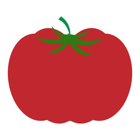 Vector illustration of a red tomato. Tomato isolated on white background.