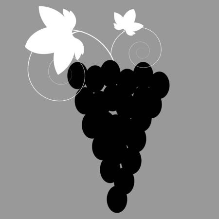 Vector illustration of a black and white grapes. Icon of the grapes. Illusztráció