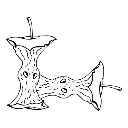 Apple core icon. Vector illustration of an eaten apple. Hand drawn apple core.