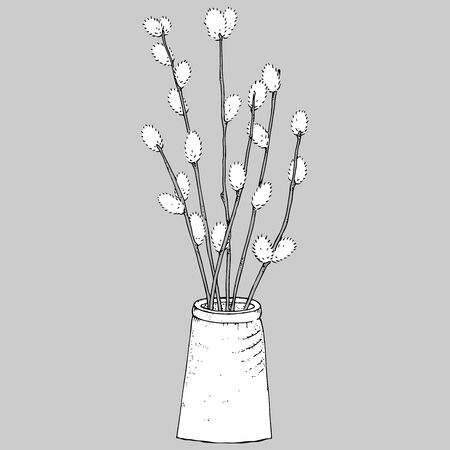 Willow icon. Vector illustration of willow in a vase. Hand drawn willow.
