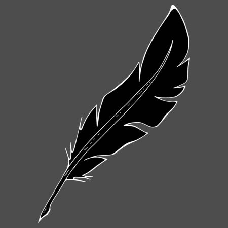 Feather pen icon. Vector illustration of a feather for calligraphy. Hand drawn feather pen  イラスト・ベクター素材